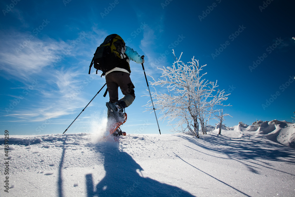 Fototapety, obrazy: Hiker in winter mountains snowshoeing