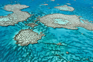 Great Barrier Reef in Queensland,Australia.