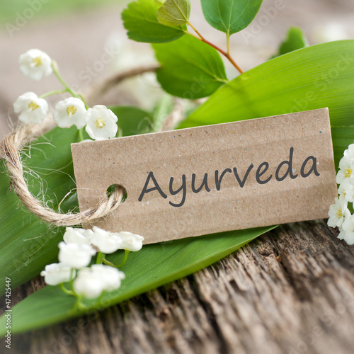 Symbol, Ayurveda Canvas Print