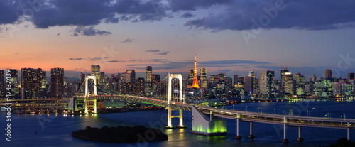 Spoed Foto op Canvas Tokyo Tokyo Bay Panorama