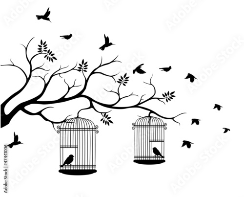 Recess Fitting Birds in cages illustration flying birds with a love for the bird in the cage