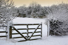 Winter Snow In The Countryside - England