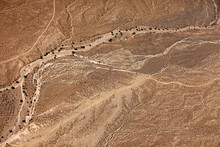 Desert The Top View