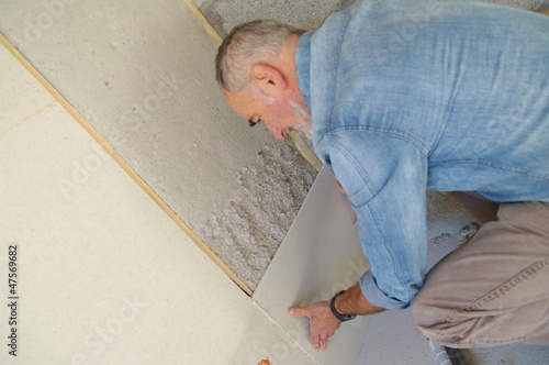 construction écologique - montage de cloison et isolation Canvas Print