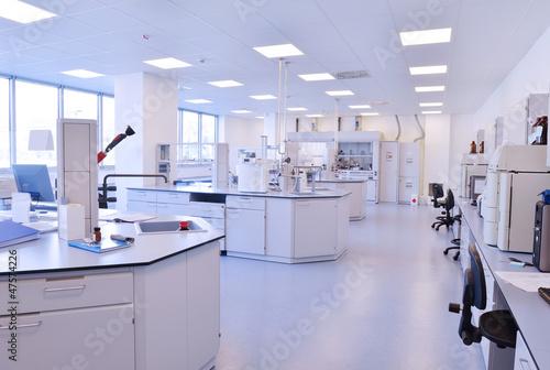 Fotografie, Obraz  scientists working at the laboratory