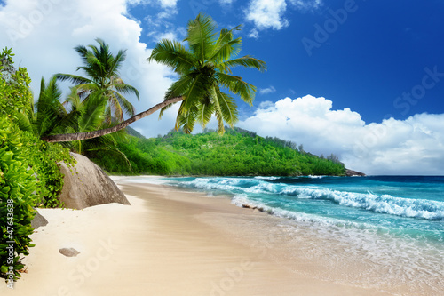 Wall mural - beach at Mahe island,  Seychelles