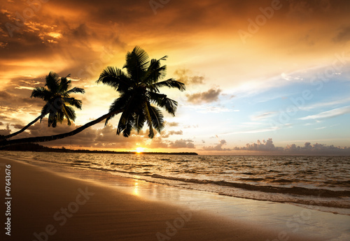 Fotomurales - sunset on the beach of caribbean sea