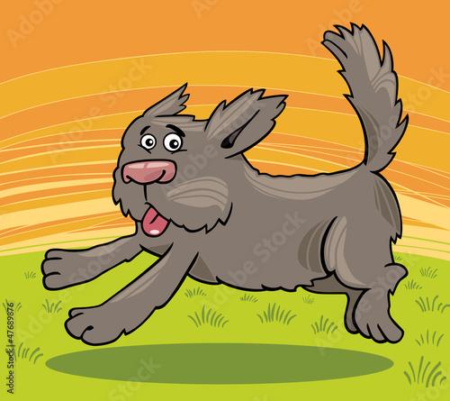 Poster Dogs running shaggy dog cartoon illustration