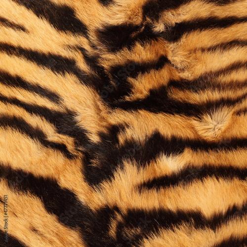 In de dag Panter stripes on a tiger pelt