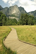 Wooden Pathway In Yosemite