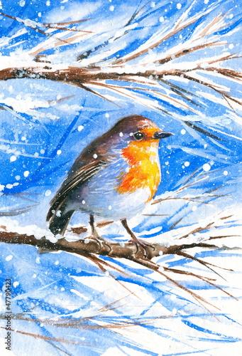 sliczny-rudzik-siedzi-na-galaz-drzewo-podczas-zimnej-zimy