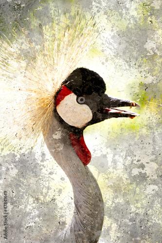 Nowoczesny obraz na płótnie Crowned Crane. Artistic portrait with textured background