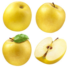 Yellow Apple. Collection. Set ...