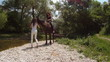 Two women and a horse in a picturesque place