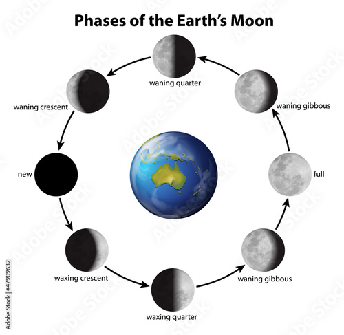 Photo Phases of the Moon