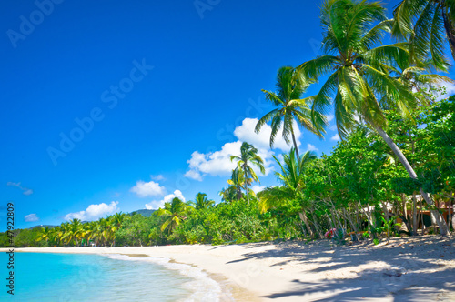 Poster Caraïben Beautiful beach in Saint Lucia, Caribbean Islands