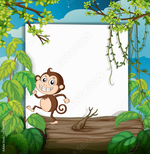 Foto op Aluminium Zoo A monkey and white board in nature