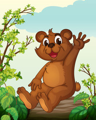 Medvjed koji sjedi na drvetu