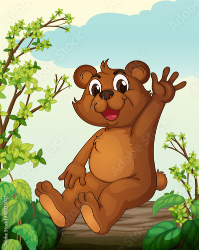 Photo sur Toile Ours A bear sitting on a wood