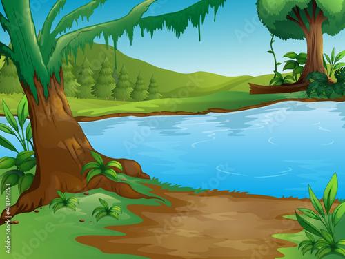 Canvas Prints River, lake A river