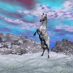 Panel SzklanyHorse rearing in the mountain - 3D render