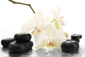 Obraz na płótnie Canvas Spa stones and orchid flowers, isolated on white.