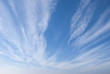 canvas print picture - Cirrus or Mares Tails Clouds