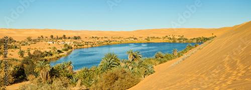 Sahara Oasis Panorama Fototapeta