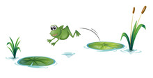 A Jumping Frog