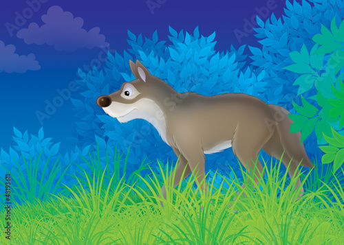 Tuinposter Bosdieren wolf in a night forest