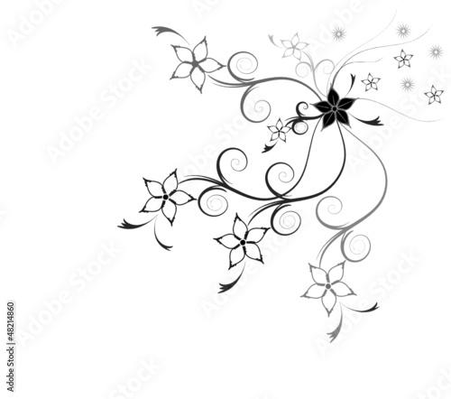 Trauer Karte Schwarz Weiß Hintergrund Blumen Buy This