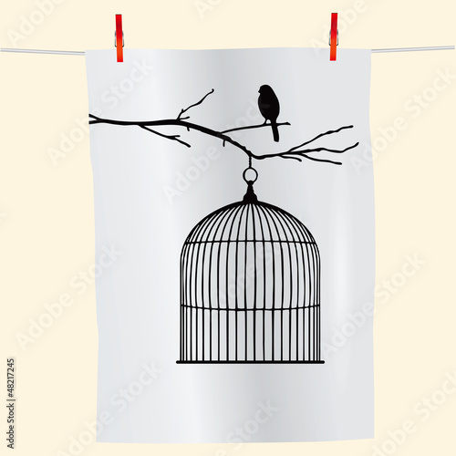 Acrylic Prints Birds in cages Bird on a branch and birdcage