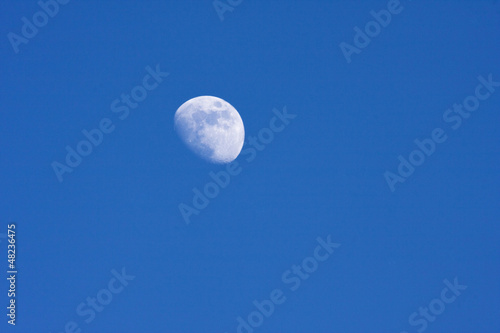 Photo  Half moon in the desert evening sky