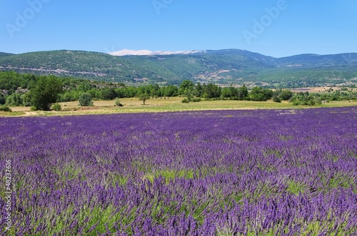 Obraz premium Mont Ventoux 25