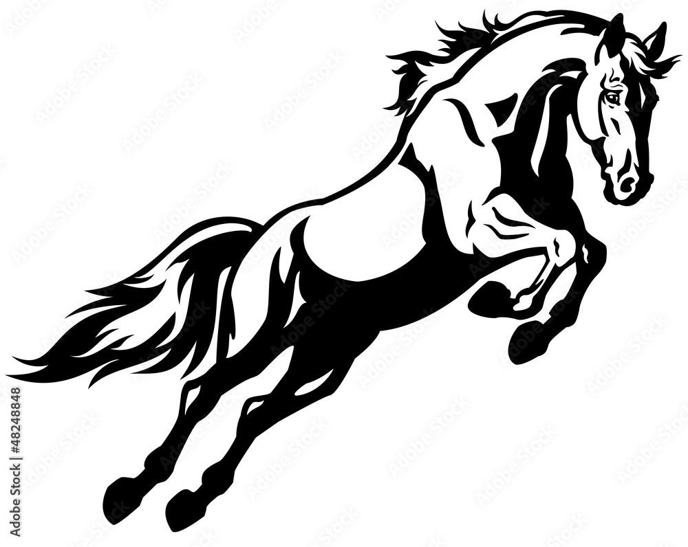 Fototapeta jumping horse black white