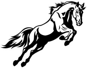 Naklejkajumping horse black white