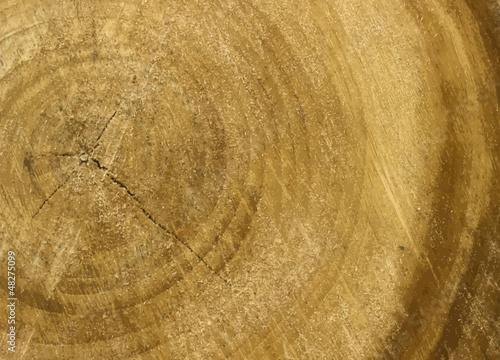 Türaufkleber Schiff natural wood