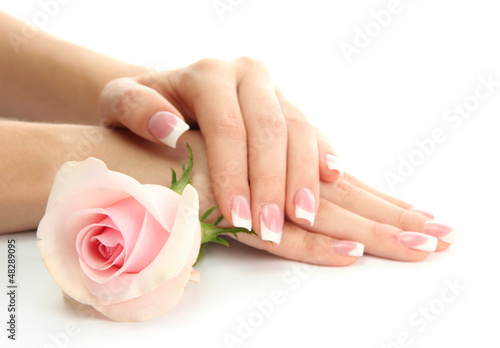 Aluminium Prints Manicure Beautiful woman hands with rose, isolated on white