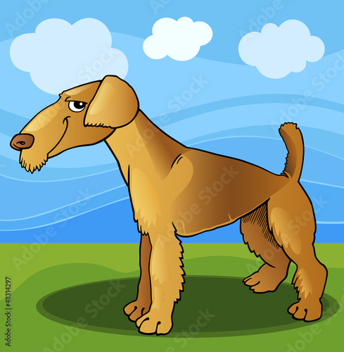 Poster Dogs airedale terrier dog cartoon illustration