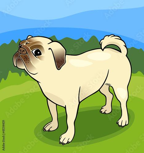 Poster Dogs pug dog cartoon illustration