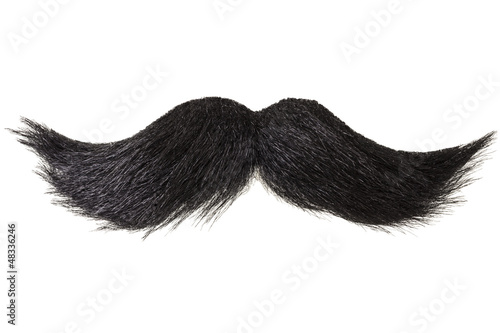 Fotografie, Obraz Curly moustache isolated on white