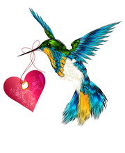 Beautiful  Vector Valentine Card With Hummingbird Holding Pink H