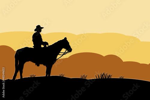 Foto op Aluminium Texas Vaquero en el desierto