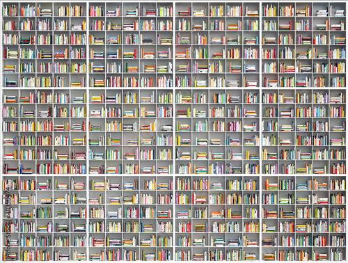 Poster Bibliotheque riesiges Bücherregal - giant huge bookshelf