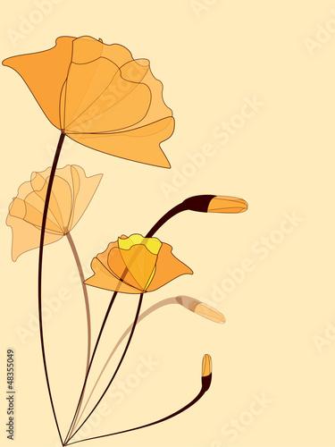 kwiecisty-tlo-z-kwiatami
