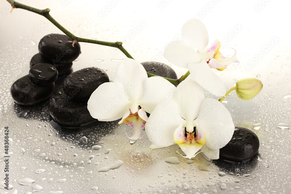 Fototapety, obrazy: Spa stones and orchid flowers, isolated on white.