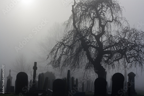 Fotografie, Obraz  Spooky old cemetery on a foggy day