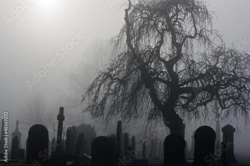 upiorny-stary-cmentarz-w-mglisty-dzien