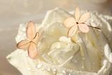 Hortensien und Rosen mit Tropfen