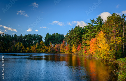 Spoed Foto op Canvas Meer / Vijver Forest Lake in autumn